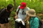 Botany conference, Rochester, Minnesota, USA. Field trip to Big Woods.